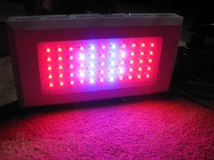 Правда о LED-светильниках?